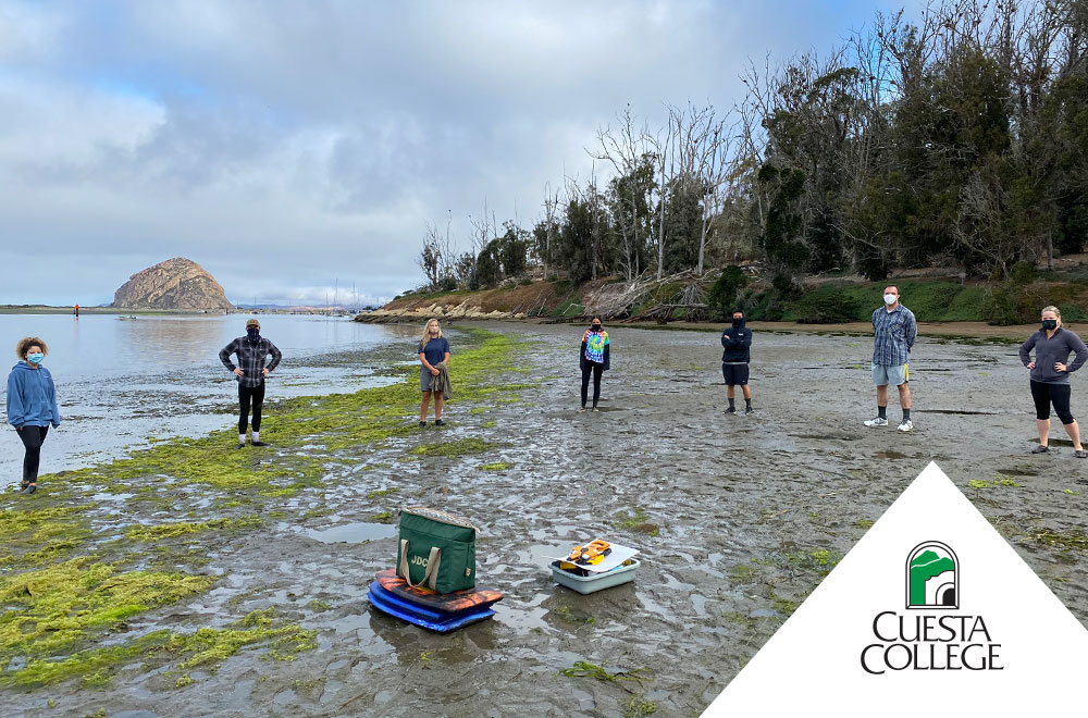 Cuesta College research students at Morro Bay
