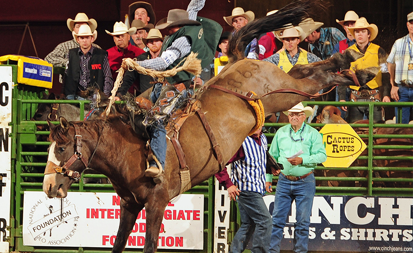 Rodeo Club Ranks 14th in Nation