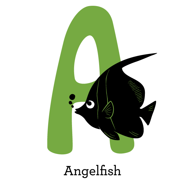 angelfish level