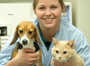 Veterinary Assistant majors princeton