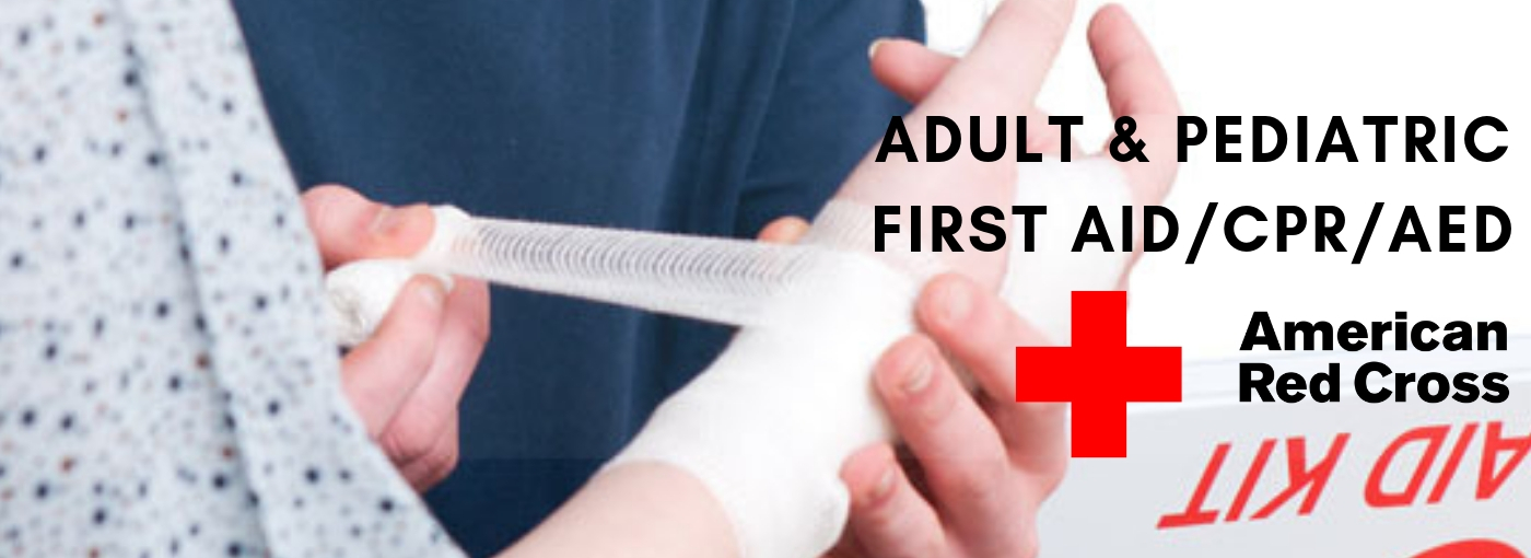 Adult And Pediatric First Aidcpraed