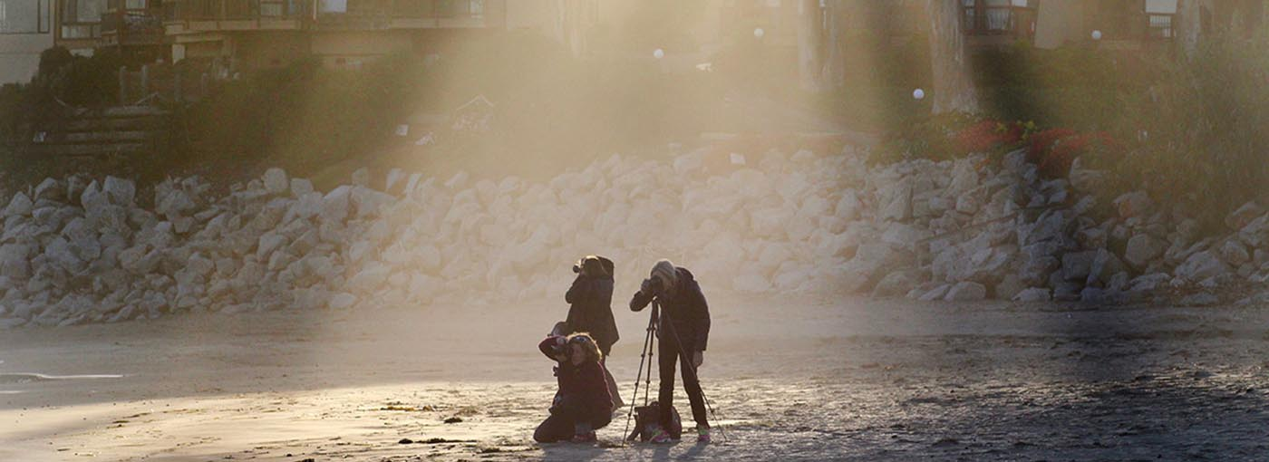Photographers on beach - photo credit: Heather Miller